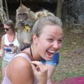 Meet monkeys in the wild in Khao Sok jungle