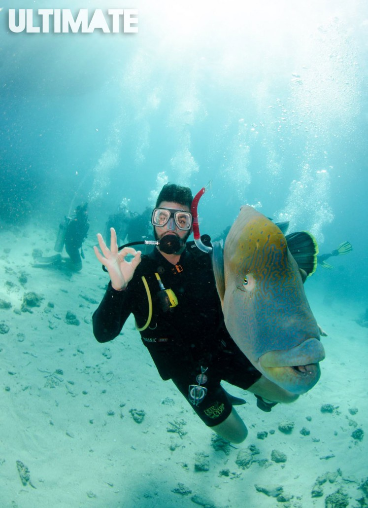 Meeting the locals in the Great Barrier Reef