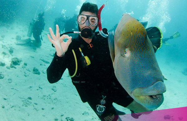 Dive on the Great Barrier Reef