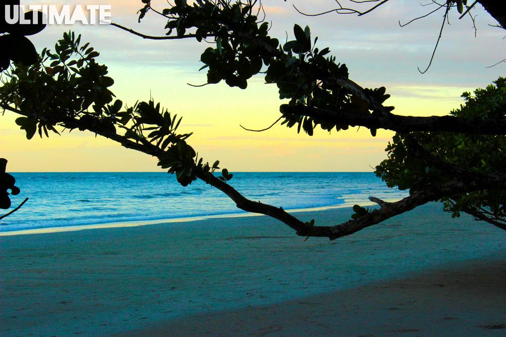 The beach in Cape Tribulation