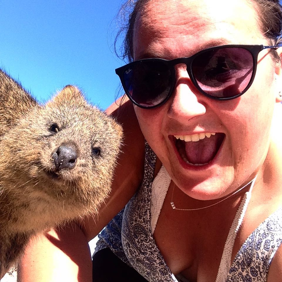 The Quokka is the happiest animal in the world!