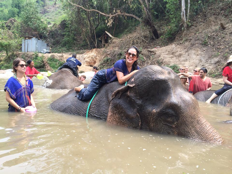 Volunteer travel experience with elephants in Thailand
