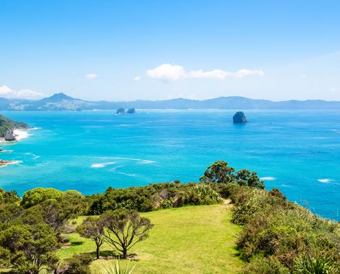 Portfolio - Ultimate NZ