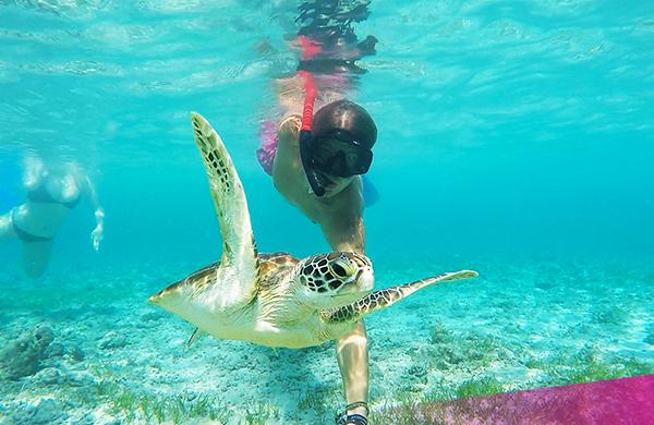 Ultimate Bali - Gili Island snorkel trip