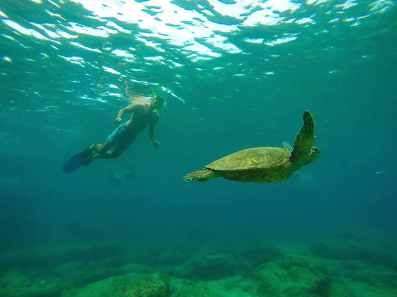 Prepare for your gap year in Australia, you'll have adventures you never thought possible!