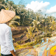 These 20 Instagram pics made us want to travel to Bali