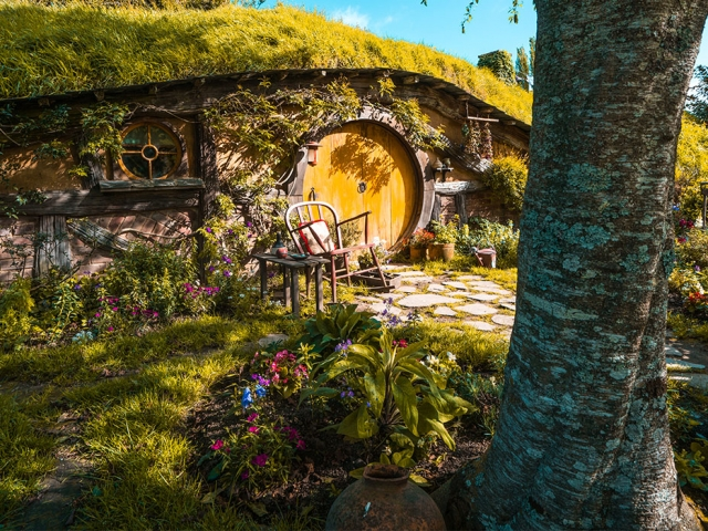 GETTING PAID TO TRAVEL? MEET OUR ULTIMATE NZ GUIDE!