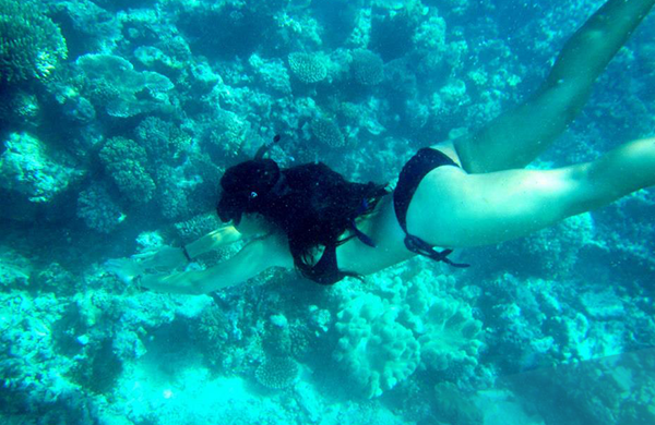 Discover the Great Barrier Reef on Ultimate East Coast: 6 Week