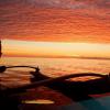 Visit Mission Beach on Ultimate East Coast: 6 Week