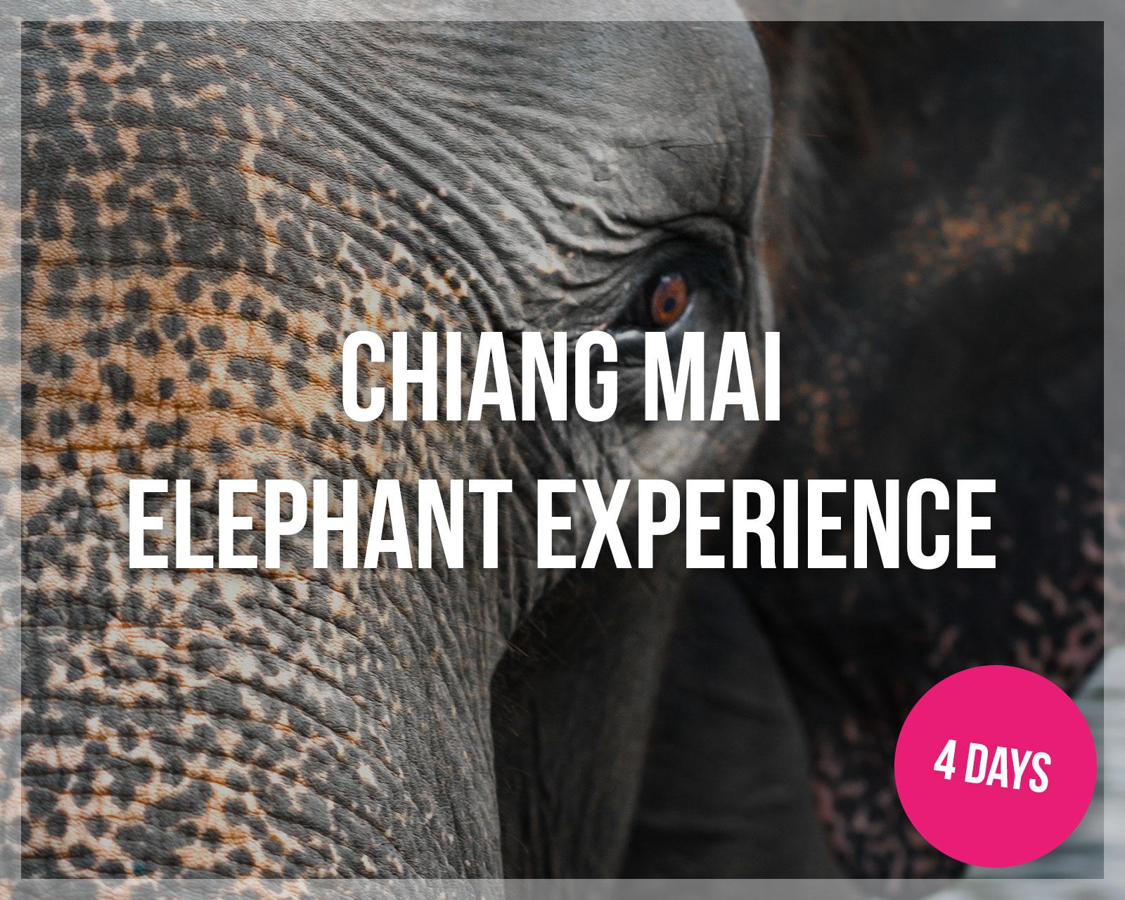 Southeast-Asia-Tours-Chiang-Mai