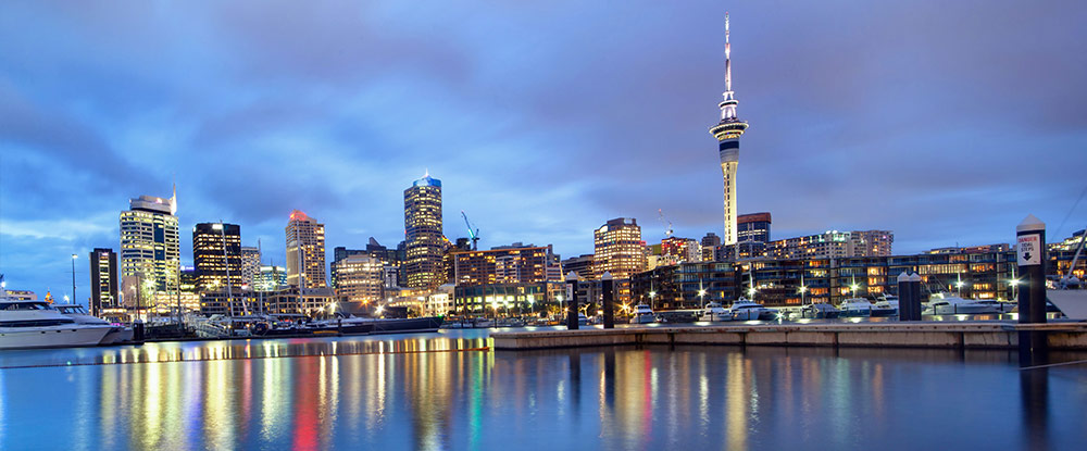 NZ Gap Year - Auckland Skyline