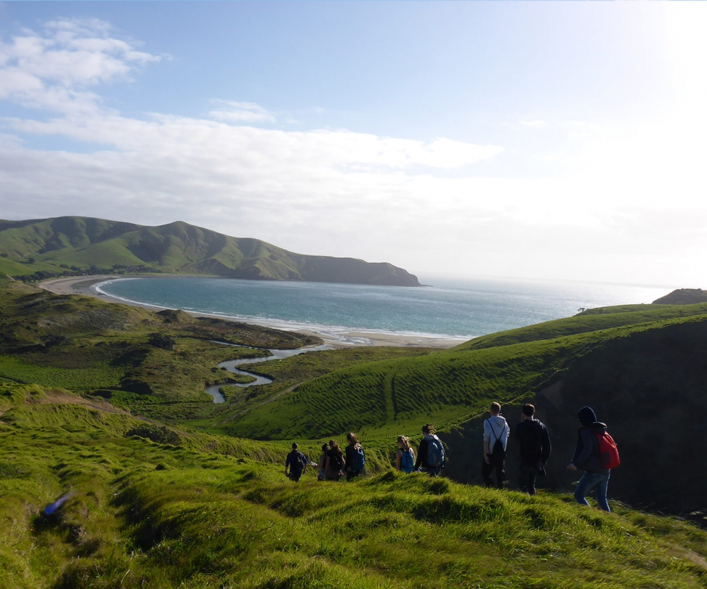 NZ Gap Year - Media Grid Coromandel