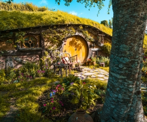 NZ North - MediaGrid Hobbiton