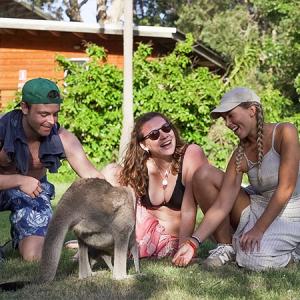 UltimateOz Kangeroo