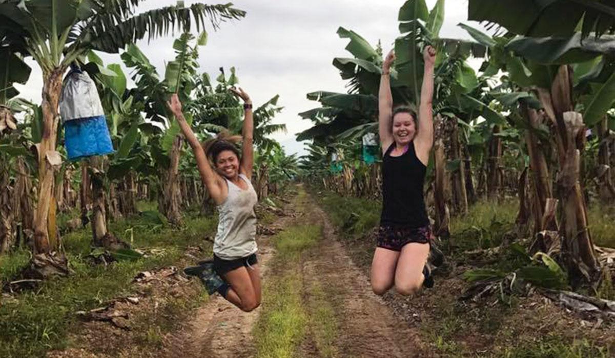 Farm Work - UltimateOz Gap Year