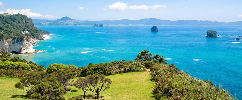 NZ National - Main