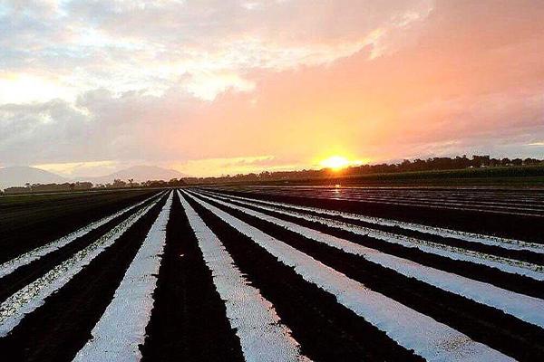 88 DAY FARMWORK AUSTRALIA 2019