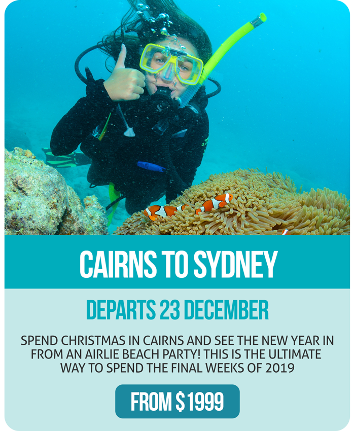 Ultimate Christmas Specials - Cairns to Sydney