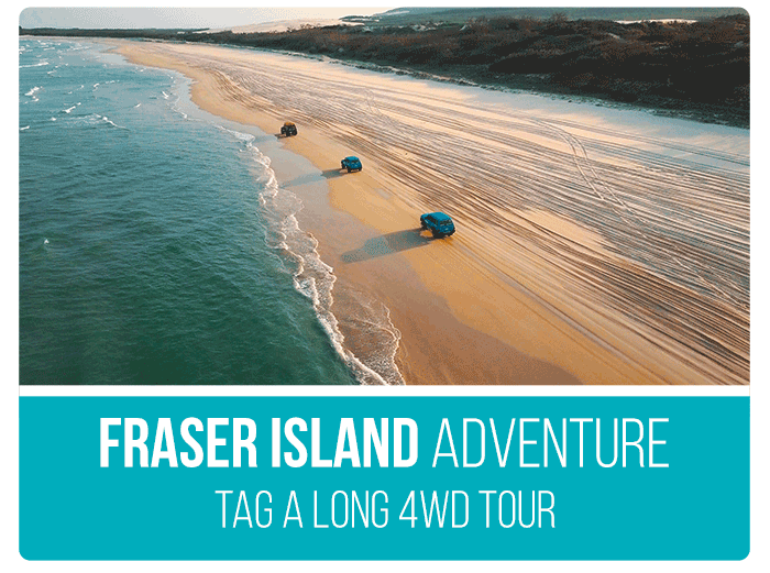 Australia Tour Packages Fraser Island Adventure