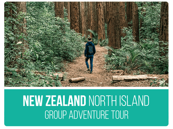 New Zealand Tours North-Island-Adventure
