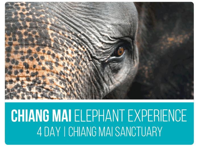 Southeast-Asia-Tours-Chiang-Mai-Tour